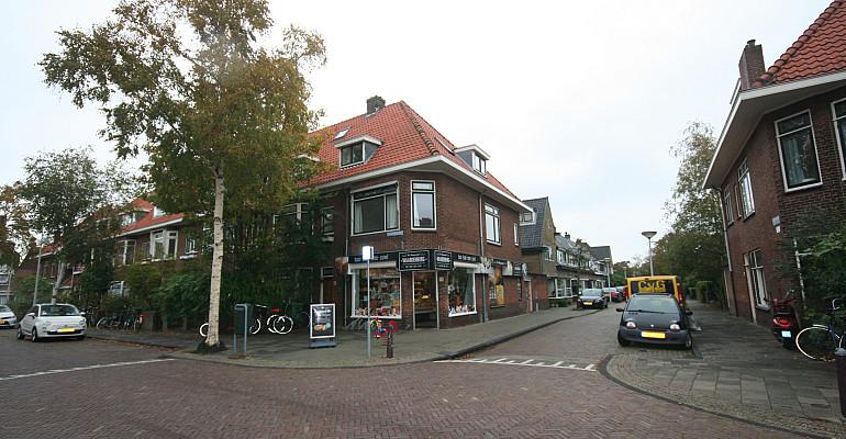Ruime bovenwoning in de Professorenwijk